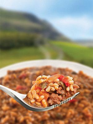 Wayfayrer Korean Style Beef and Rice