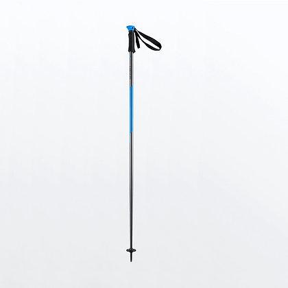 Head Multi S Allride Ski Pole