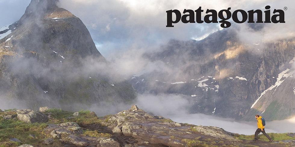 patagonia banner.jpg
