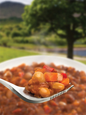 Wayfayrer Moroccan Bean Stew