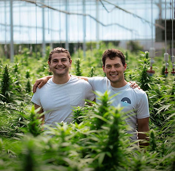 Aiden Kravitz and Kyle Jurow: Greybeard Growers | Organic CBD