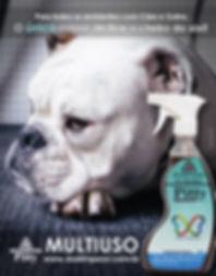 DSA LIMPEZA banner 300x400.jpg