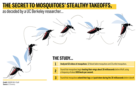 Mosquitoes' Stealthy Takeoffs