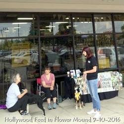 Hollywood Feed in Flower Mound 9-10-2016.jpg