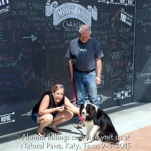 Natural Pawz, Katy, Texas 9-5-2015.jpg