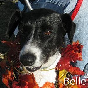 Belle_TN.jpg