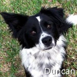 Duncan_TN.jpg