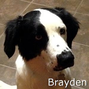 Brayden_TN.jpg