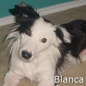 Blanca_TN.jpg