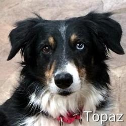Topaz_TN01.jpg
