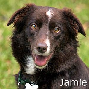 Jamie2_TN.jpg