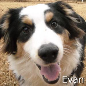Evan_TN.jpg