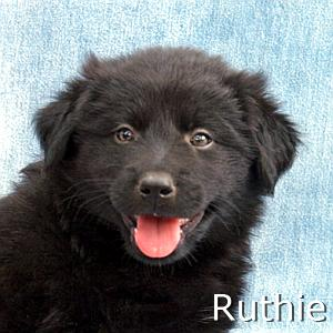Ruthie_TN.jpg