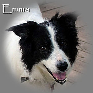 Emma-TN-RIP.jpg