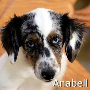 Anabell_TN.jpg