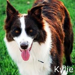 Kylie_TN.jpg
