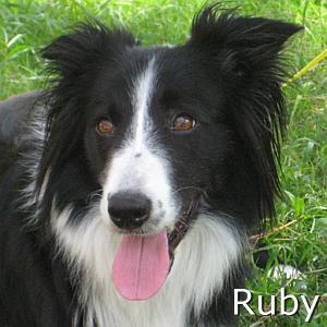 Ruby2_TN.jpg