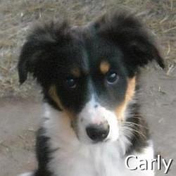 Carly_TN.jpg