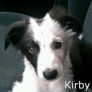 Kirby_TN.jpg