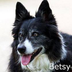 Betsy_TN.jpg