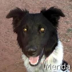 Merida_TN.jpg