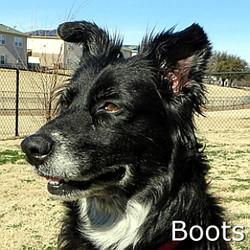 Boots_TN