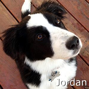 Jordan_TN01.jpg
