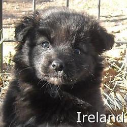 Ireland_TN.jpg