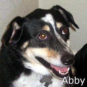 Abby_TN_New.jpg