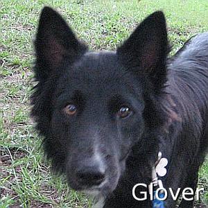 Glover_TN.jpg