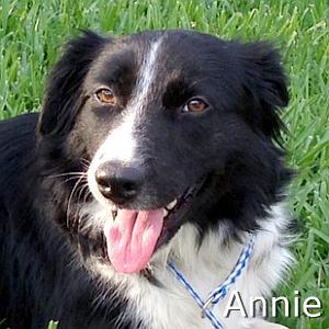 Annie2_TN.jpg
