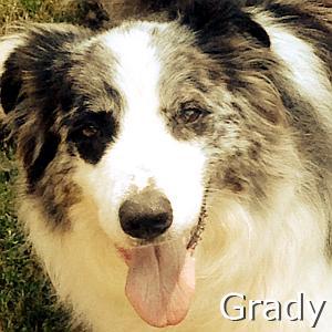 Grady_TN.jpg