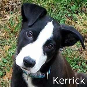 Kerrick_TN.jpg