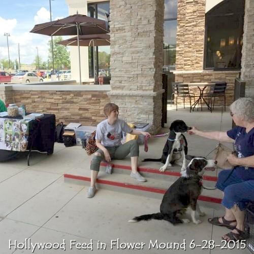 Hollywood Feed in Flower Mound6-28-2015.jpg
