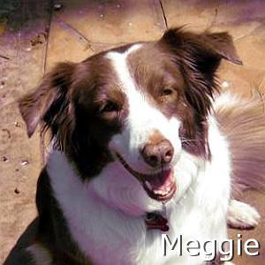 Meggie_TN.jpg