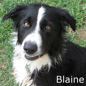 Blaine_TN.jpg