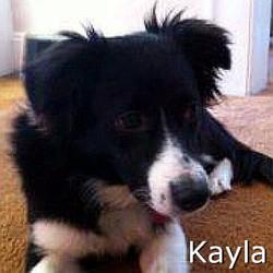 Kayla_TN.jpg