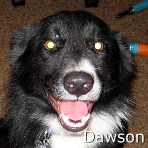 Dawson_TN.jpg