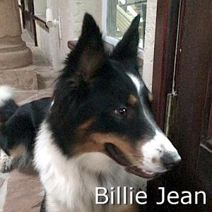 Billie_Jean_TN.jpg
