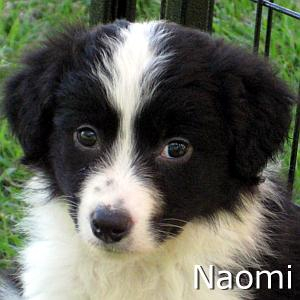 Naomi_TN.jpg