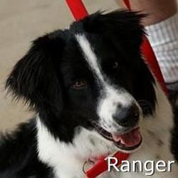 Ranger_TN.jpg