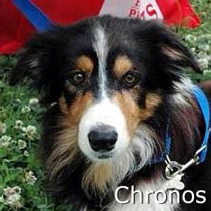Chronos_TN.jpg
