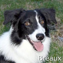 Breaux_TN.jpg