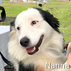 Nanna_TN.jpg