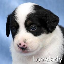 Lovelady_TN.jpg