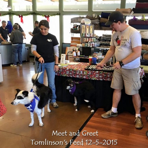 Creek at Meet and Greet, Tomlinson's Feed 12-5-2015.jpg