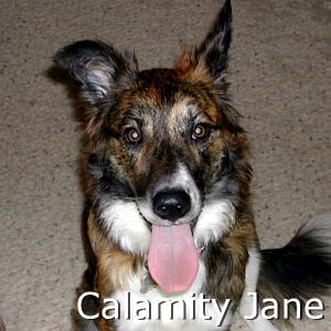 CalamityJane_TN_New.jpg