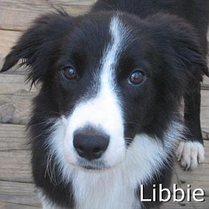 Libbie_TN.jpg