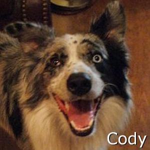 Cody_TN.jpg