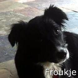 Froukje_TN.jpg